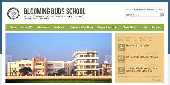 BBS, Moga - Website